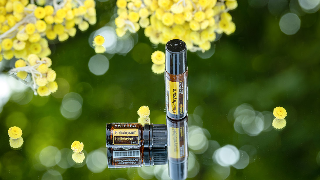 Helichrysum Oil Uses And Benefits Dōterra Essential Oils
