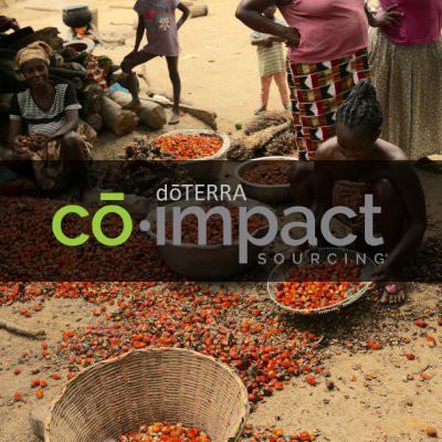 co-impact 合作計畫介紹