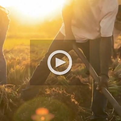 co-impact 合作計畫影片紀實