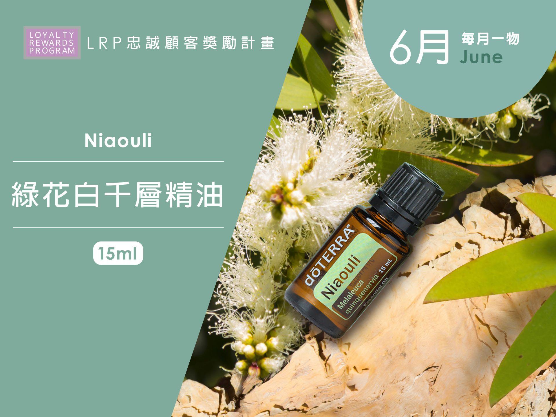 6月每月一物 Niaouli 綠花白千層精油 15ml
