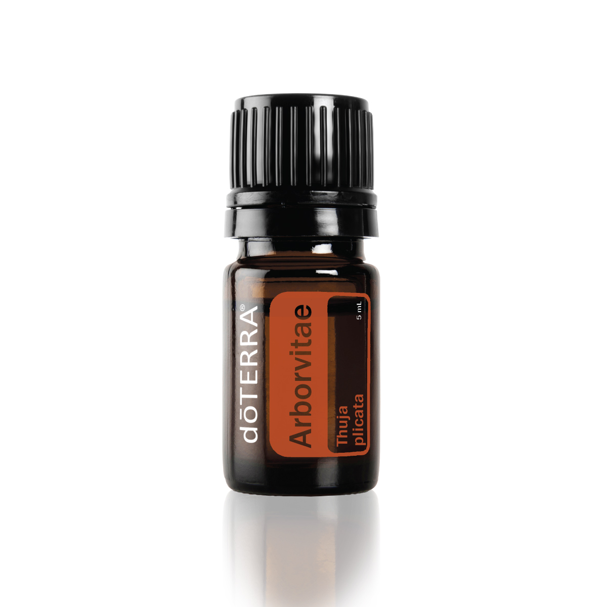 What are the benefits of Arborvitae essential oil? Arborvitae oil has benefits for the skin, body, and household cleaning