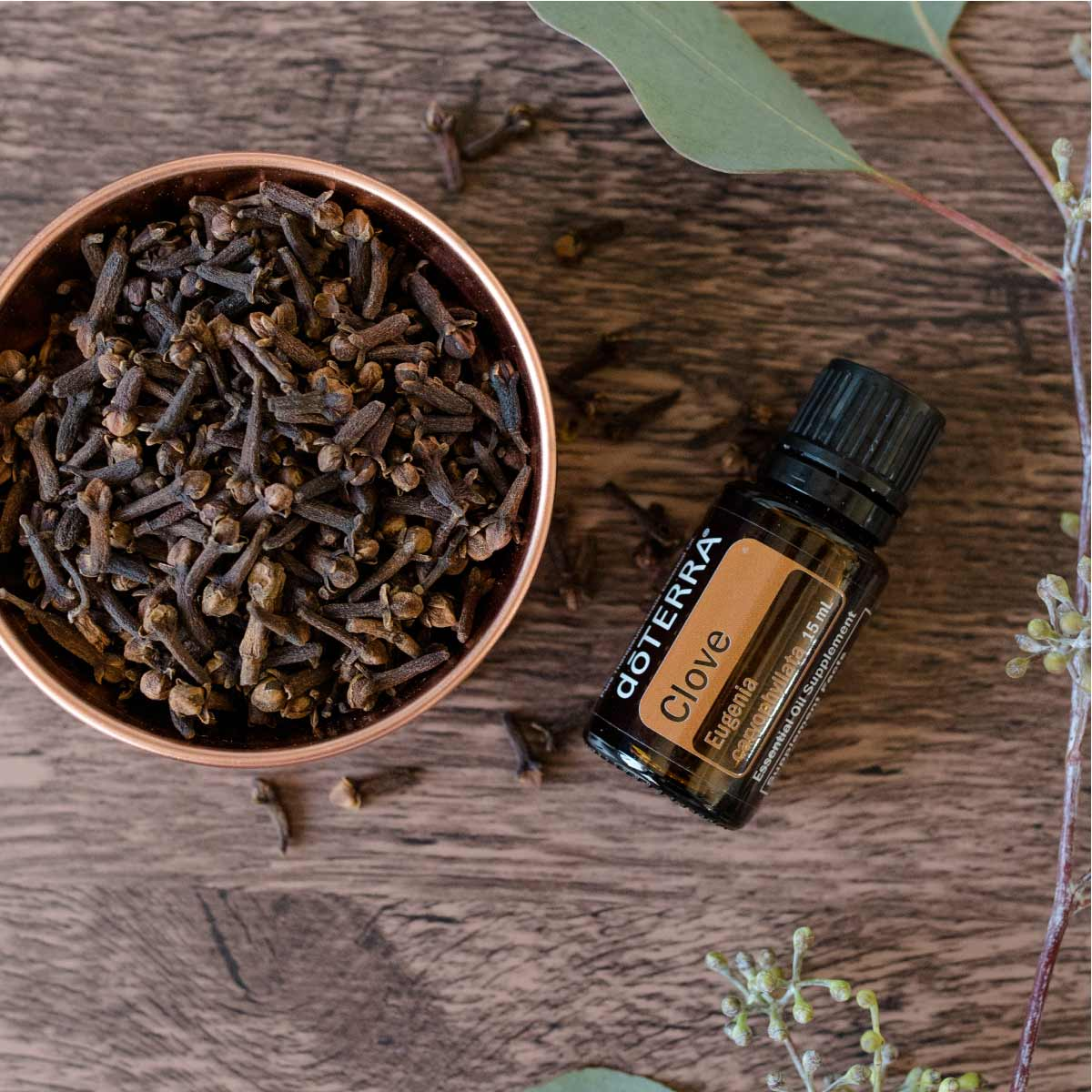 doTERRA Clove oil bottle with a bowl of fresh clove. One of the best benefits of Clove essential oil is that it can be used to help clean the gums and teeth.