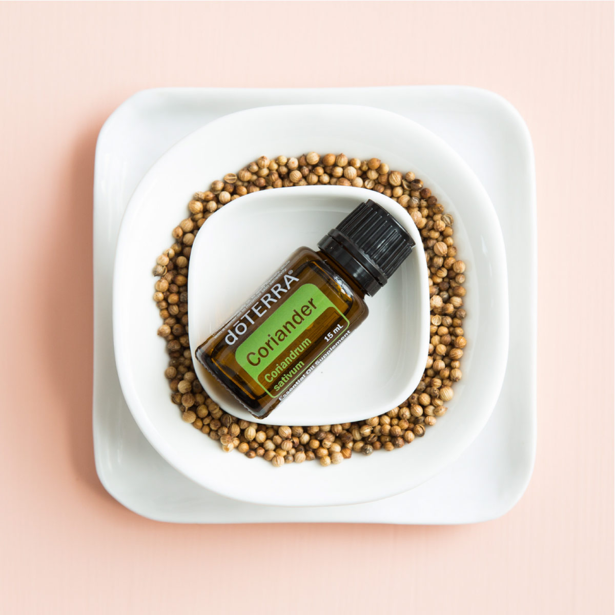 Bottle of doTERRA Coriander oil and coriander seeds in a white dish. What are the uses and benefits of Coriander oil? Coriander essential oil is beneficial for the skin, creates a relaxing atmosphere, and aids in digestion.