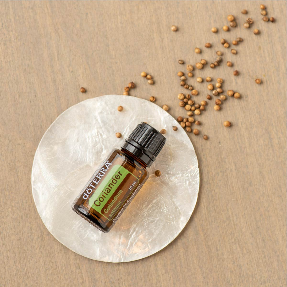 Bottle of Coriander essential oil and coriander seeds on a table. There are many benefits of Coriander oil. People use Coriander seed oil for the skin, mood, and digestion.