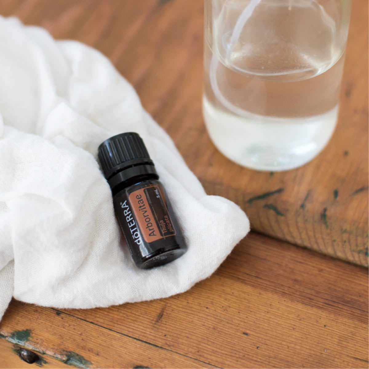 There are many ways to use Arborvitae oil. Arborvitae essential oil can be used to preserve wood, cleanse the skin, and promote calm feelings.