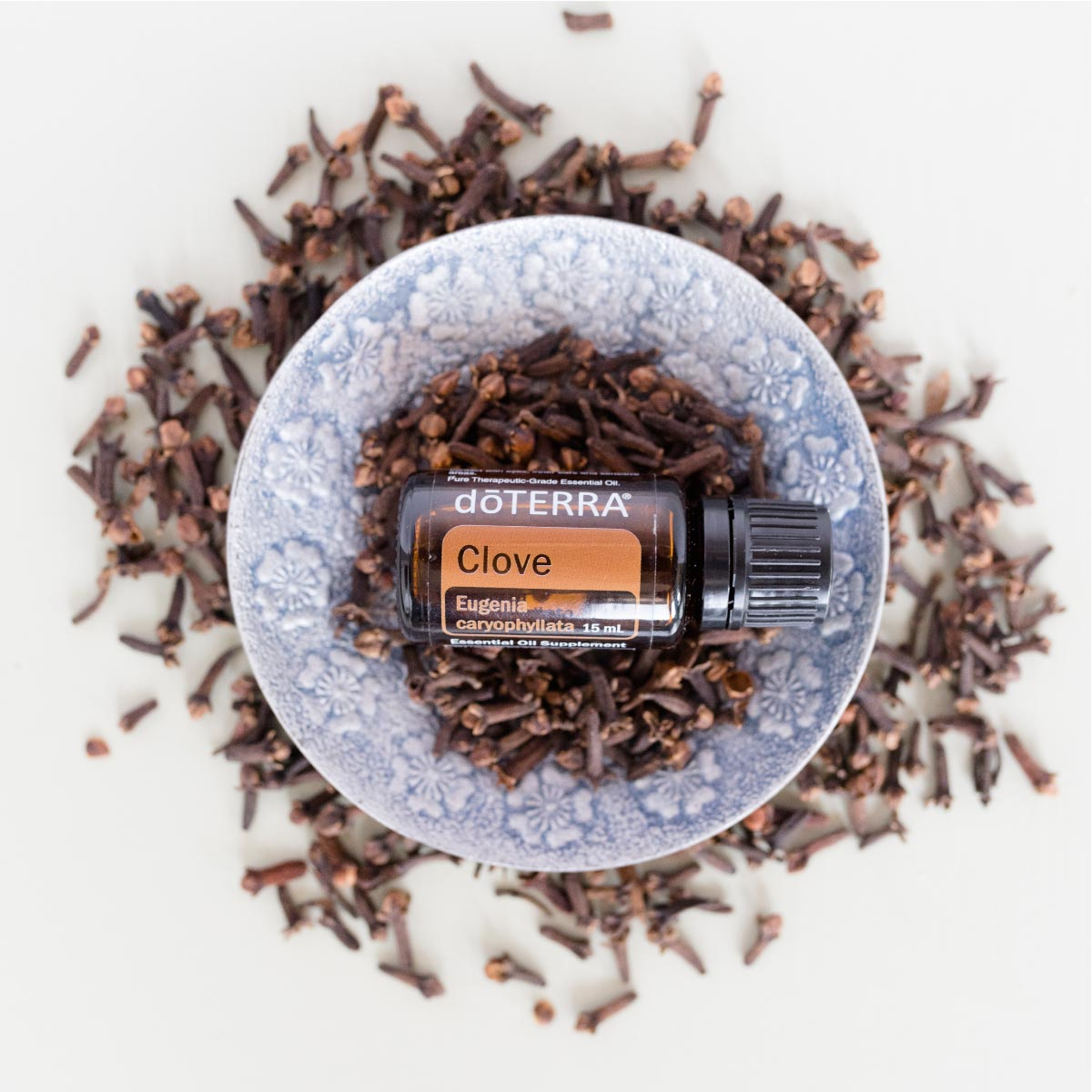 doTERRA Clove oil bottle in bowl with fresh clove. What are the top uses for Clove oil? Clove oil can be used to clean the teeth and gums, and also provides the body with powerful antioxidant benefits.*