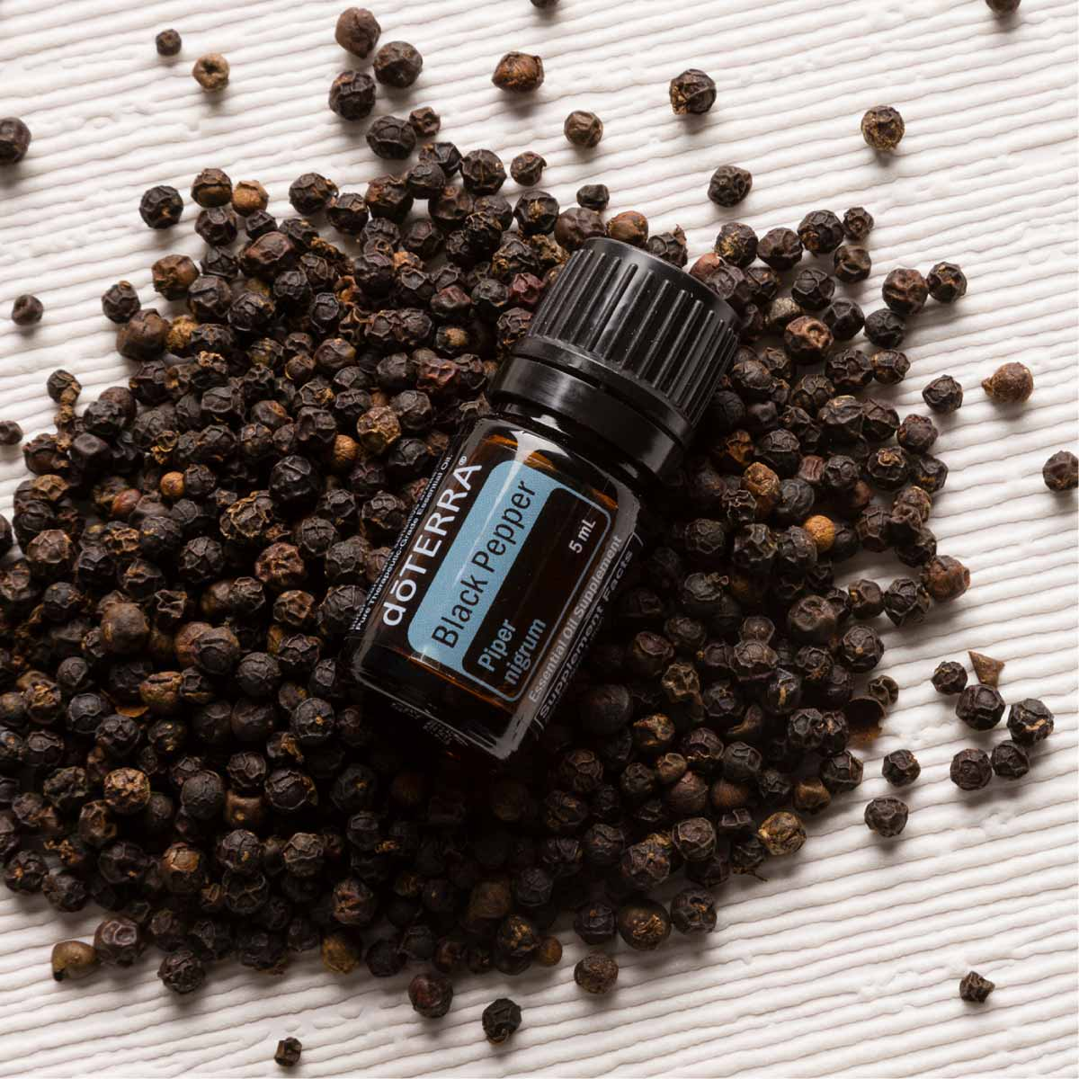 Black Pepper oil bottle and fruit from the black pepper plant. What does Black Pepper essential oil smell like? The aroma of Black Pepper oil can be described as a sharp scent that is hot or spicy, with a few fruity notes.
