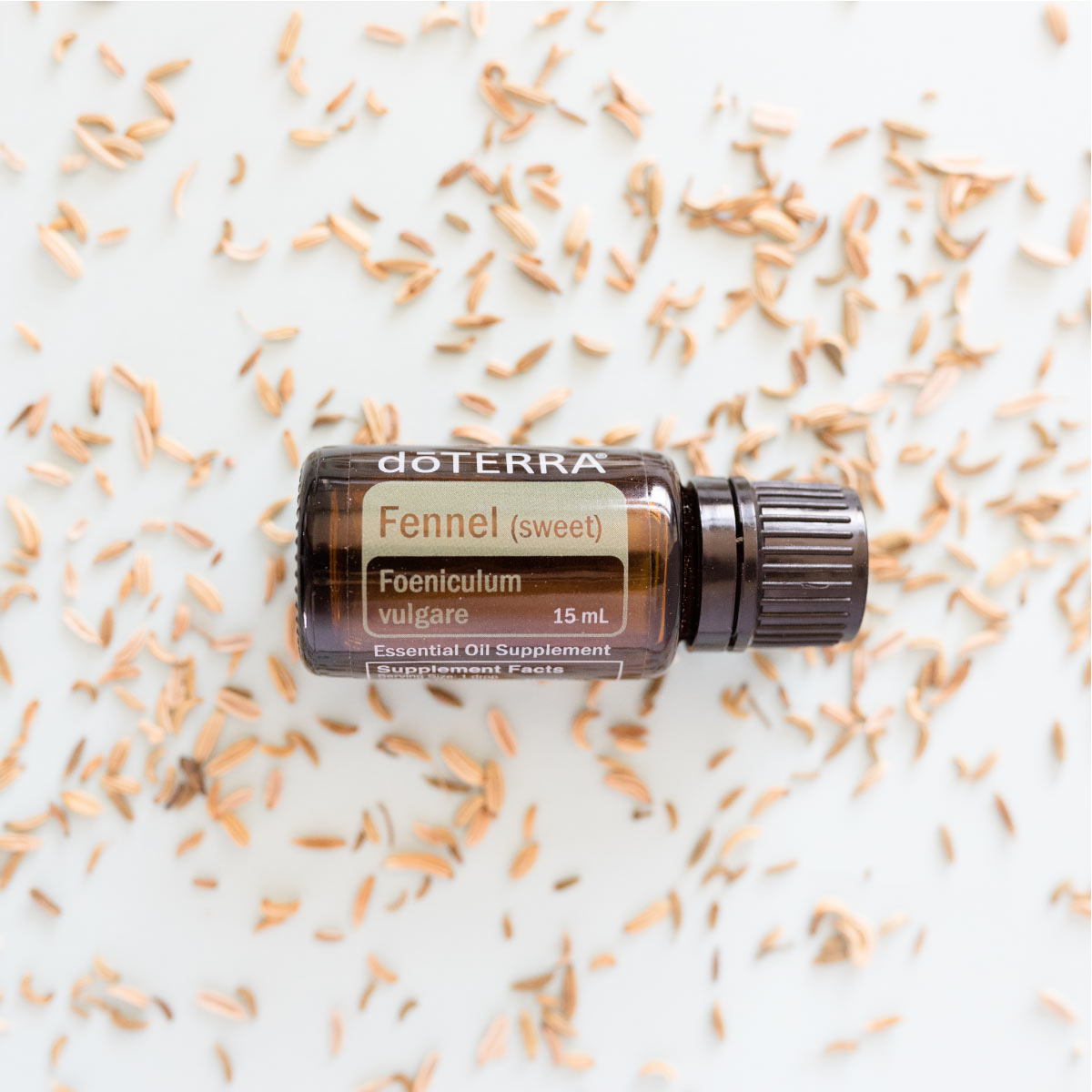 Bottle of doTERRA Fennel essential oil with fresh fennel seeds. What is Fennel essential oil used for? Many people use Fennel oil to promote healthy digestion, to add flavor to food, and to ease occasional stomach upset stomach or bloating.*