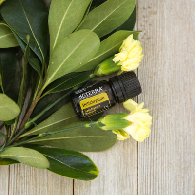 Helichrysum essential oil bottle with yellow Helichrysum flowers and green leaves. Among many benefits, doTERRA Helichrysum oil can be used on the skin to reduce the appearance of wrinkles and blemishes.