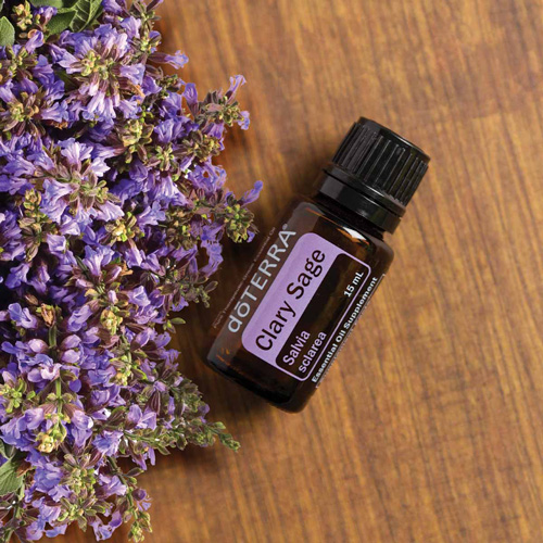 Bottle of clary sage essential oil, small purple flowers. How do you use clary sage oil? There are dozens of uses for clary sage oil, particularly for mood, skin, sleep, hair, and menstruation.