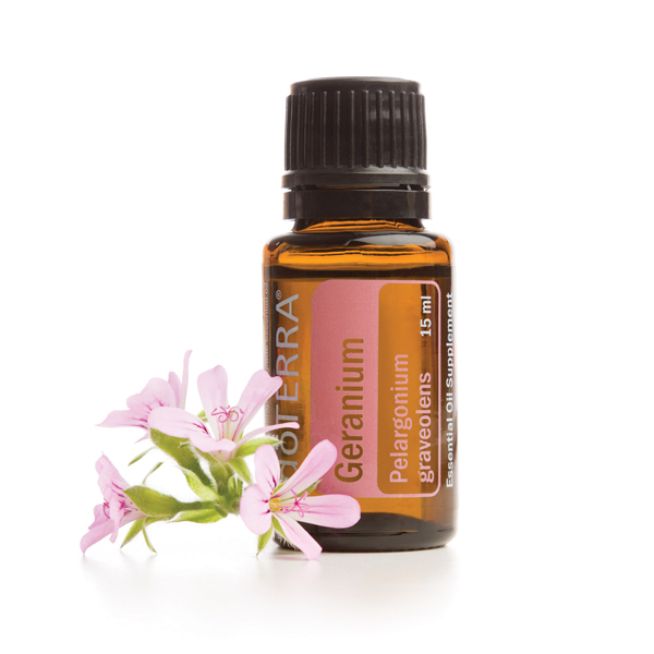 Bottle of doTERRA Geranium oil, small pink flowers. What are the best ways to use Geranium essential oil? Geranium oil is useful for skin, hair, aromatherapy, and internal benefits.