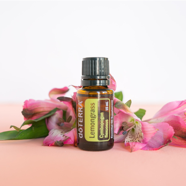 Lemongrass essential oil bottle, pink flowers, green leaves. How do I use lemongrass oil? You can use lemongrass oil to flavor food, promote healthy digestion, soothe anxious feelings, repel bugs, create a soothing massage, and more.