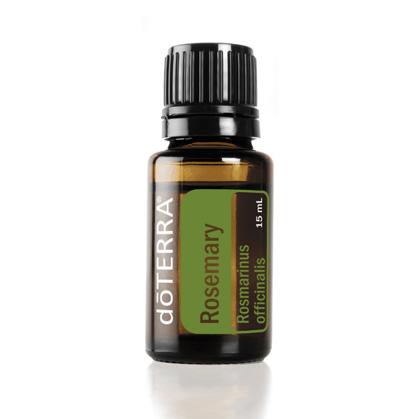 Bottle of doTERRA Rosemary oil. Want to know how to use rosemary oil? Keep reading to learn the best tips and tricks for using rosemary essential oil for hair, cooking, internal benefits, and more.