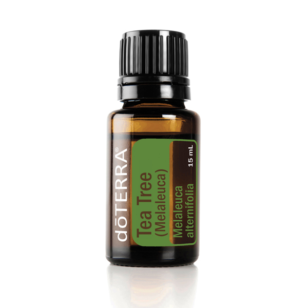 Bottle of doTERRA Tea Tree essential oil. Wondering how to use tea tree oil? Tea tree oil can be used to clean the skin and nails, protect against environmental threats, and promote healthy-looking hair.