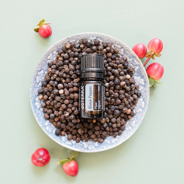 Black pepper plant fruit in a bowl with a bottle of Black Pepper oil. There are many benefits of Black Pepper essential oil for the body, including antioxidants and help with digestion. When you cook with Black Pepper oil, you can reap the internal benefits of this unique oil.