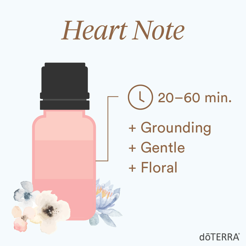 When layering scents, use a heart note. It will last anywhere from 20 to 60 minutes. These essential oils have a grounding, gentle, floral aroma.