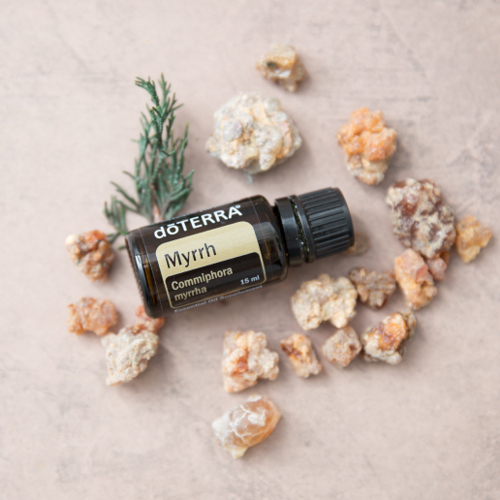 Bottle of Myrrh oil and myrrh resin. How do I use Myrrh essential oil? Myrrh oil can be used to beautify the skin, balance the emotions, and support the immune system.