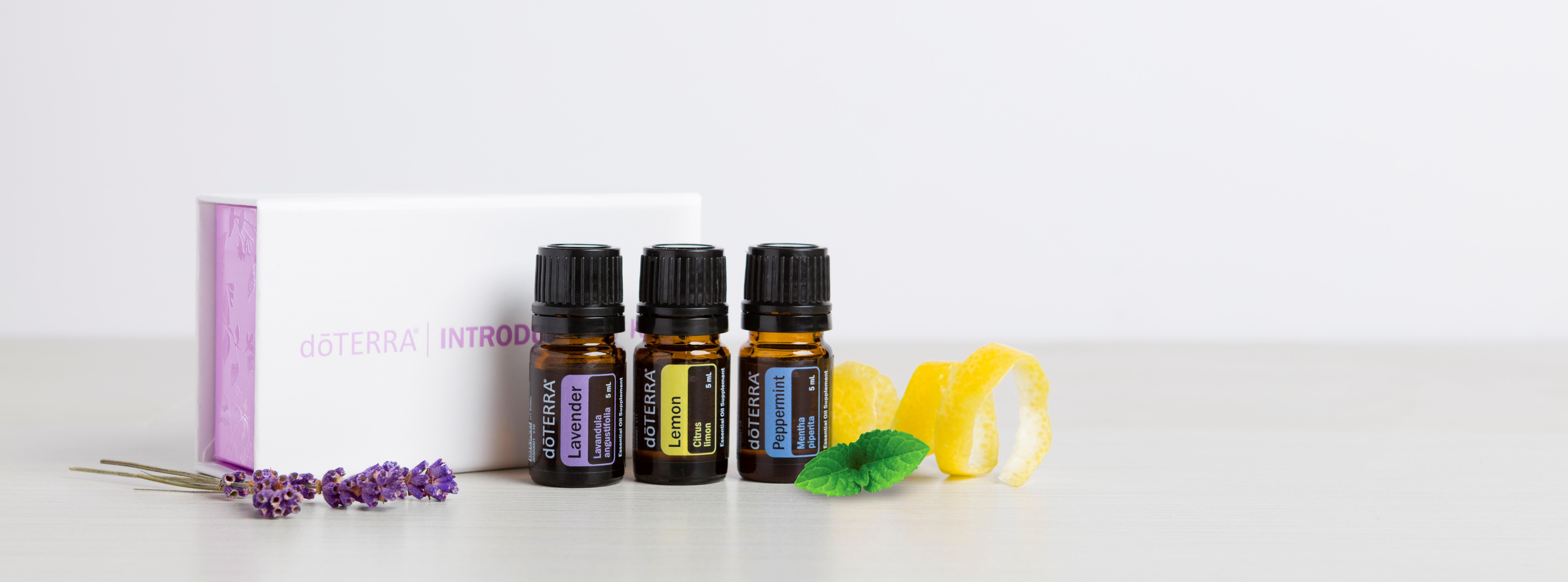 Intro Kit oils