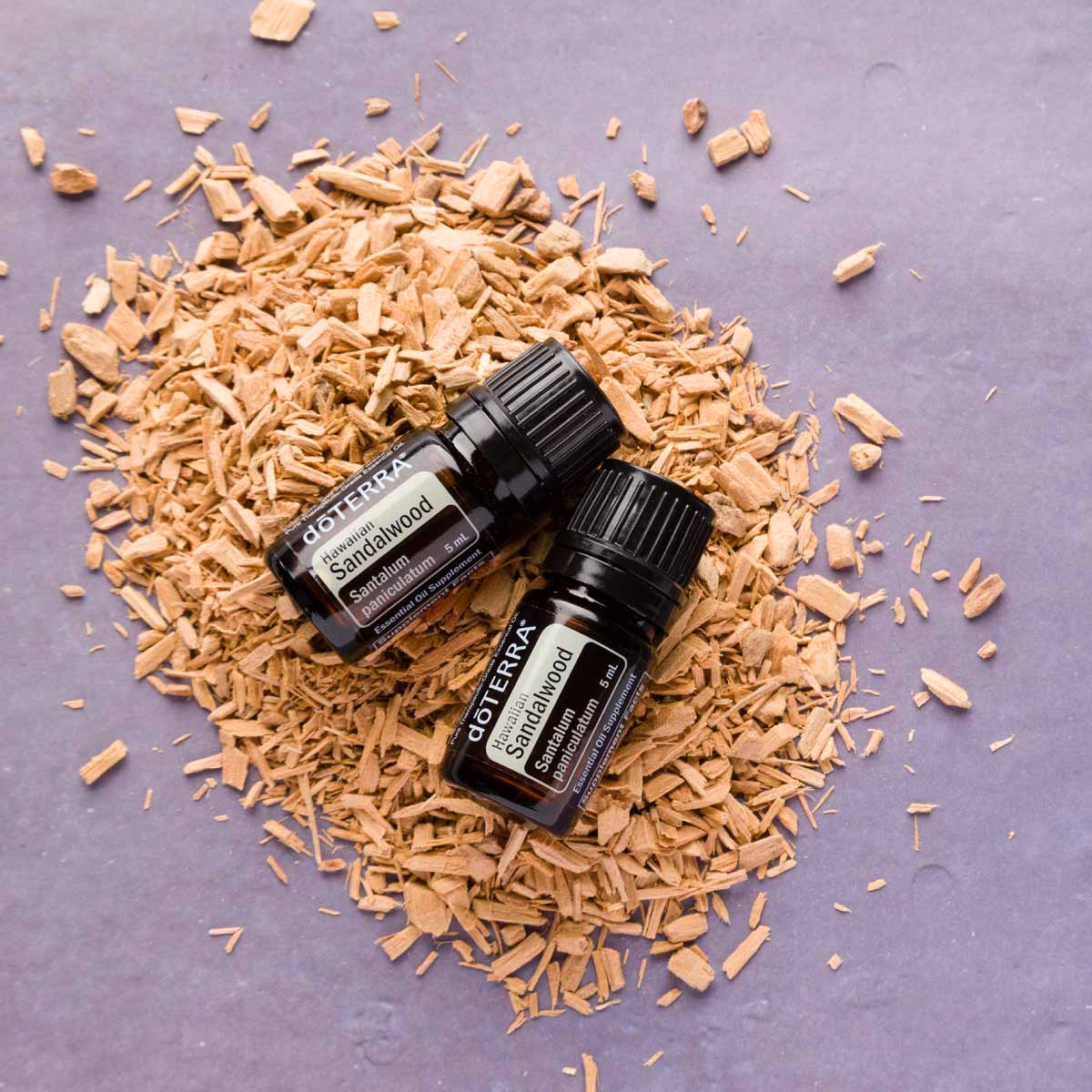 Two bottles of Hawaiian Sandalwood essential oil sitting on a pile of wood shavings. What are the benefits of Hawaiian Sandalwood oil? Hawaiian Sandalwood oil has benefits for the skin, meditation, and for promoting relaxation.