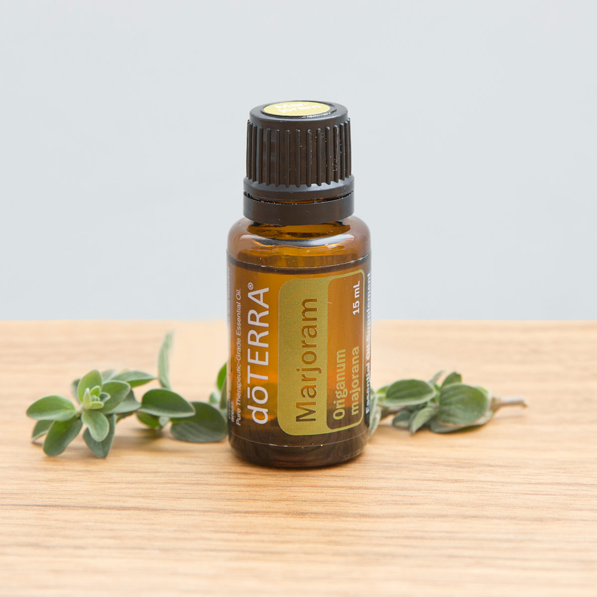 Bottle of doTERRA Marjoram oil on wooden surface next to fresh marjoram leaves. What does Marjoram oil smell like? Marjoram essential oil is known to have a warm, woody, and herbaceous aroma.
