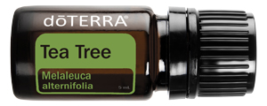 doTERRA Tea Tree essential oil comes in the Healthy Start kit