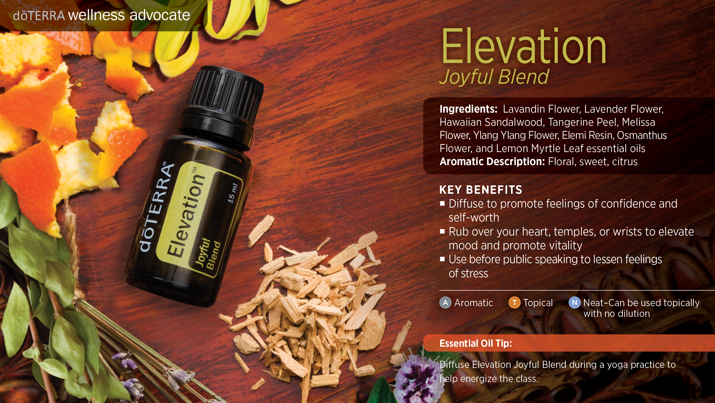 doTERRA Elevation Joyful Blend Uses - Best Essential Oils