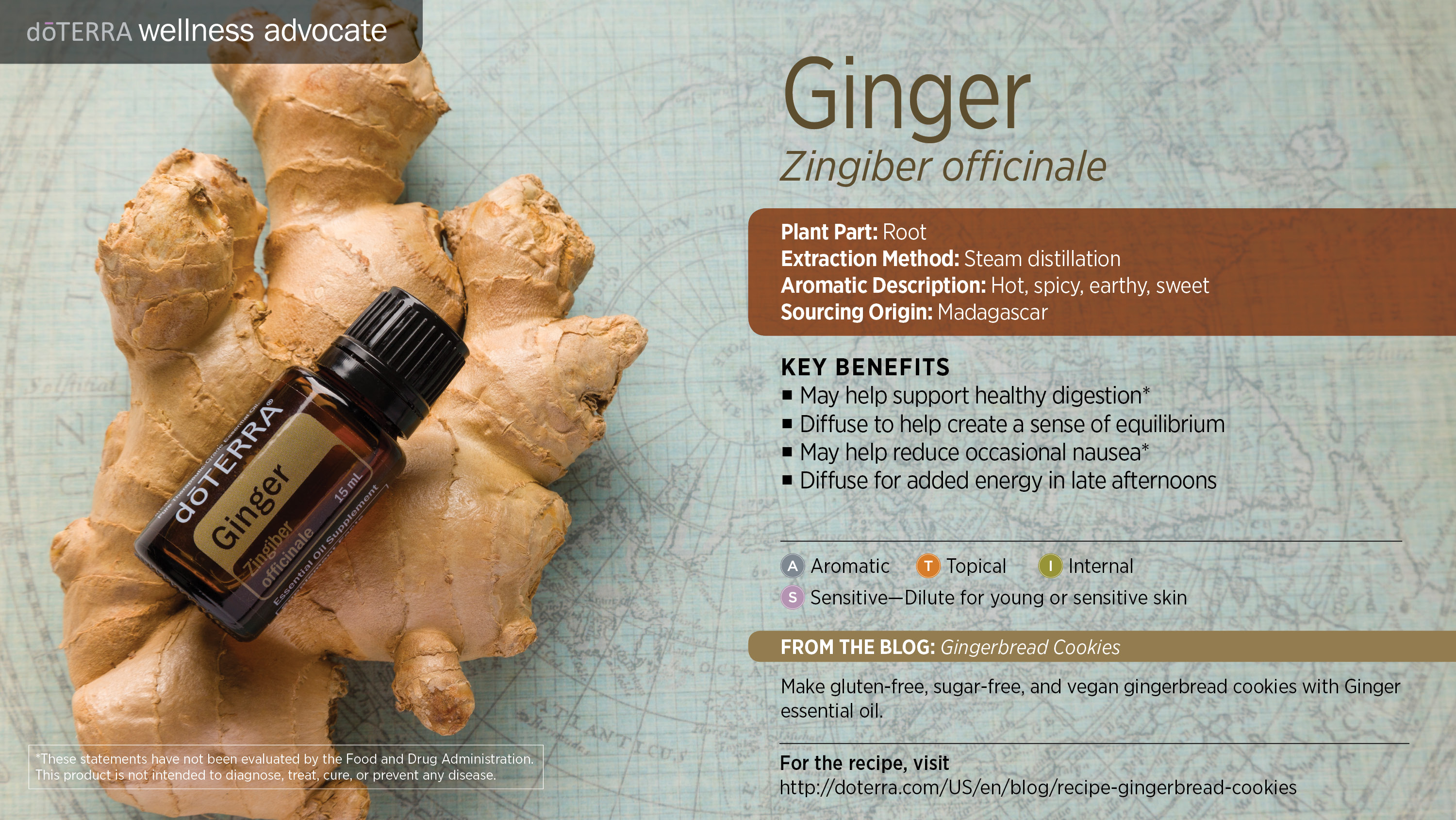 ginger oil d terra essential oils