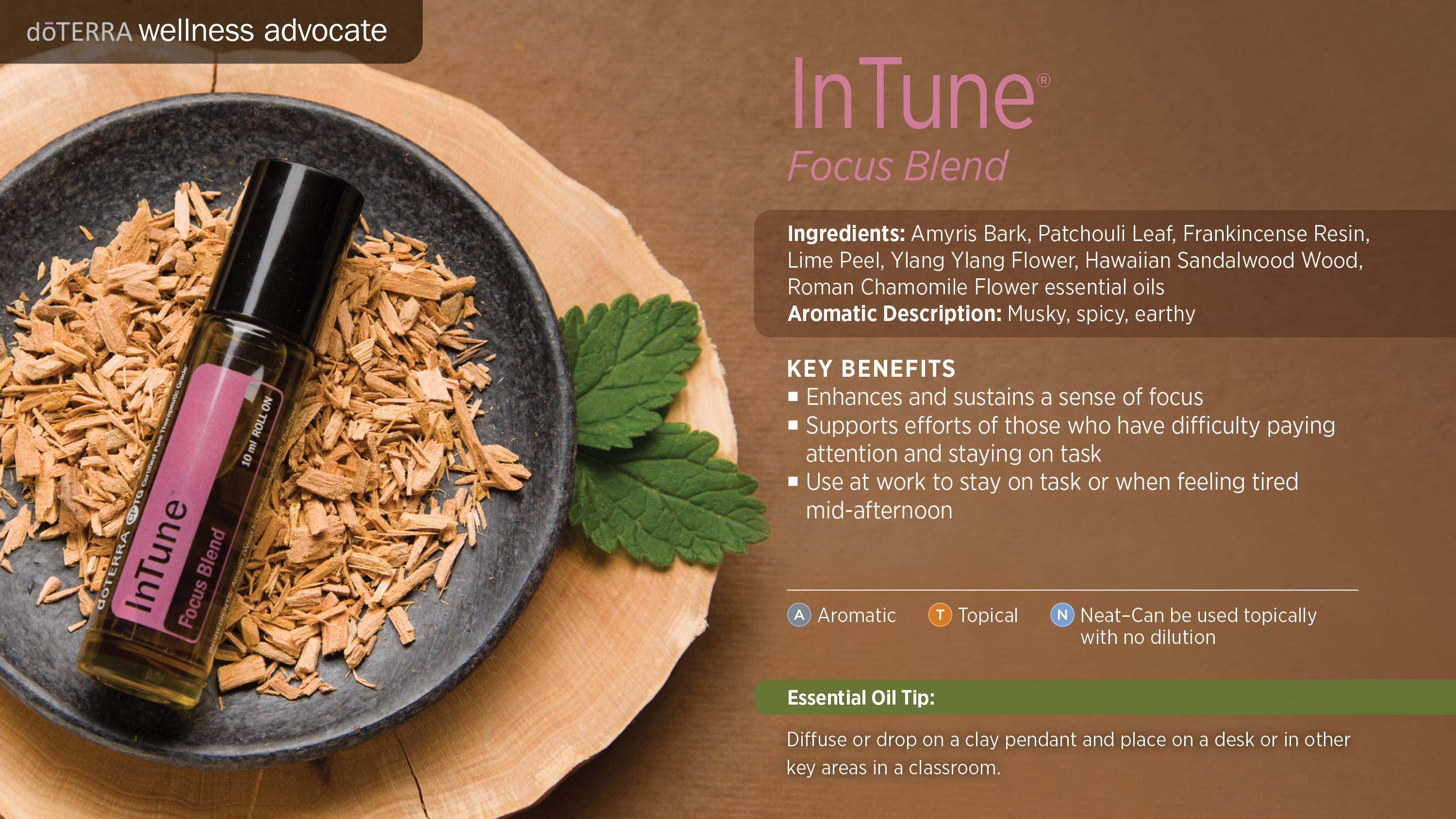 Intune focus blend dterra essential oils primary benefits forumfinder Gallery