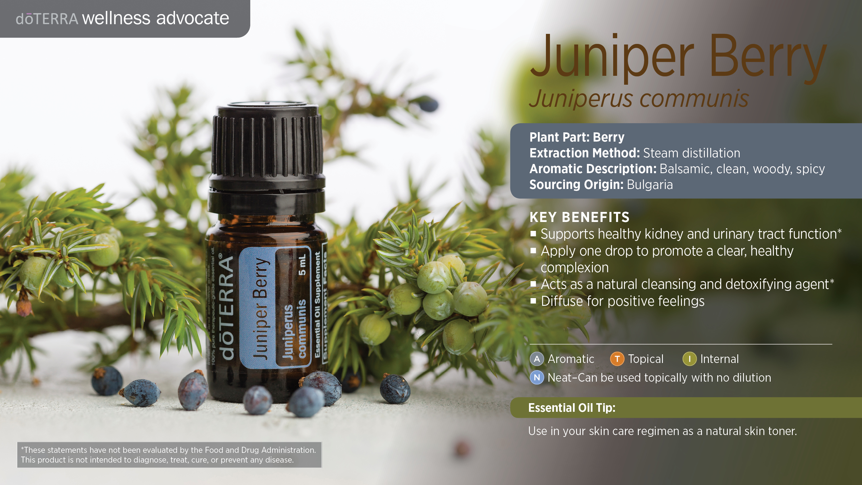Juniper Berry Oil Dōterra Essential Oils
