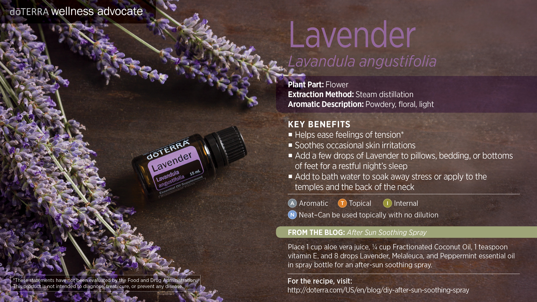 dōTERRA Lavender EO