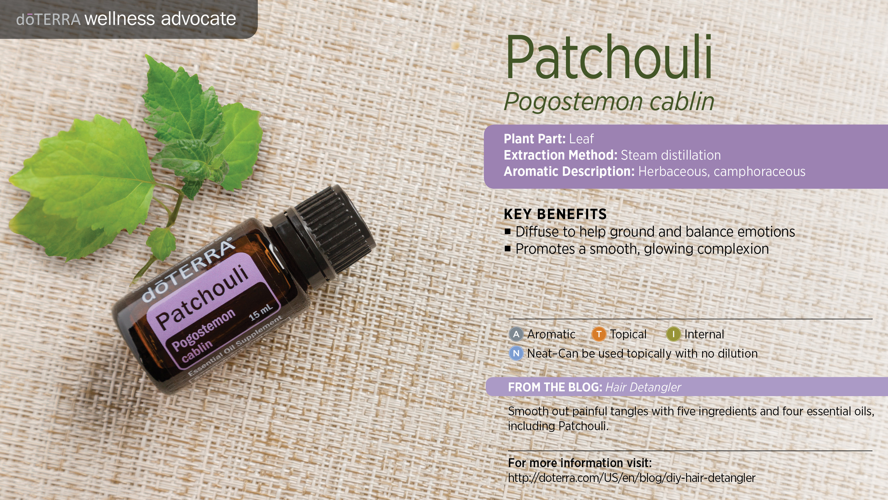 Doterra Patchouli Essential Oil Uses With Recipes Best