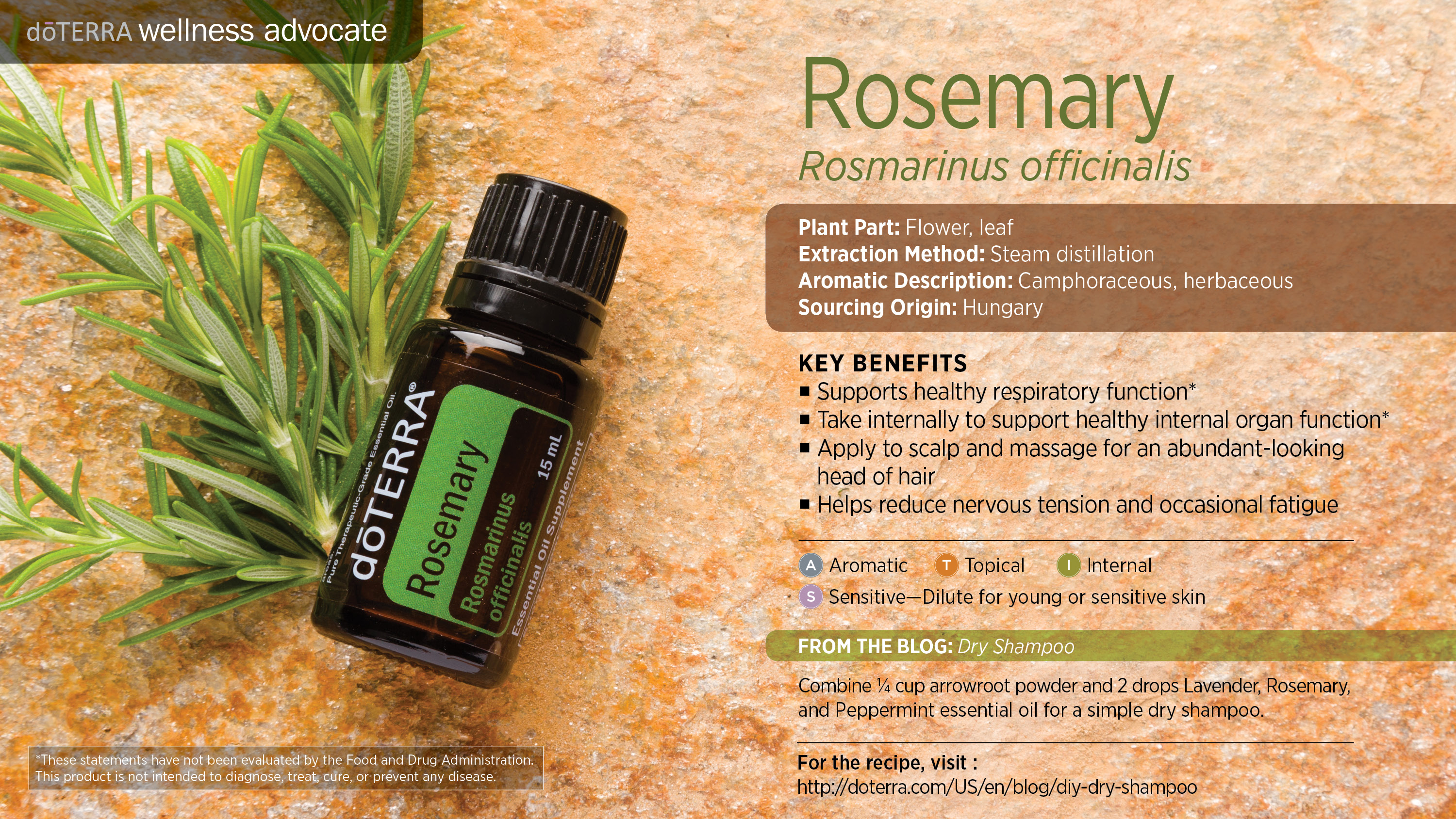 doTERRA Rosemary Essential Oil Uses with DIY and Food Recipes -