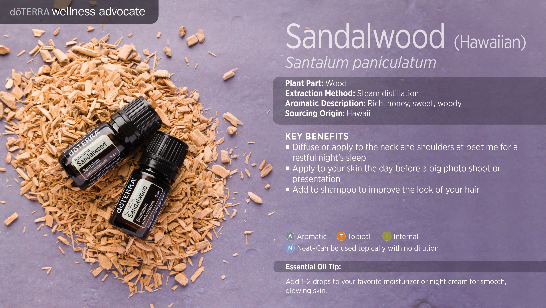 Hawaiian Sandalwood Oil Terra Essential Oils