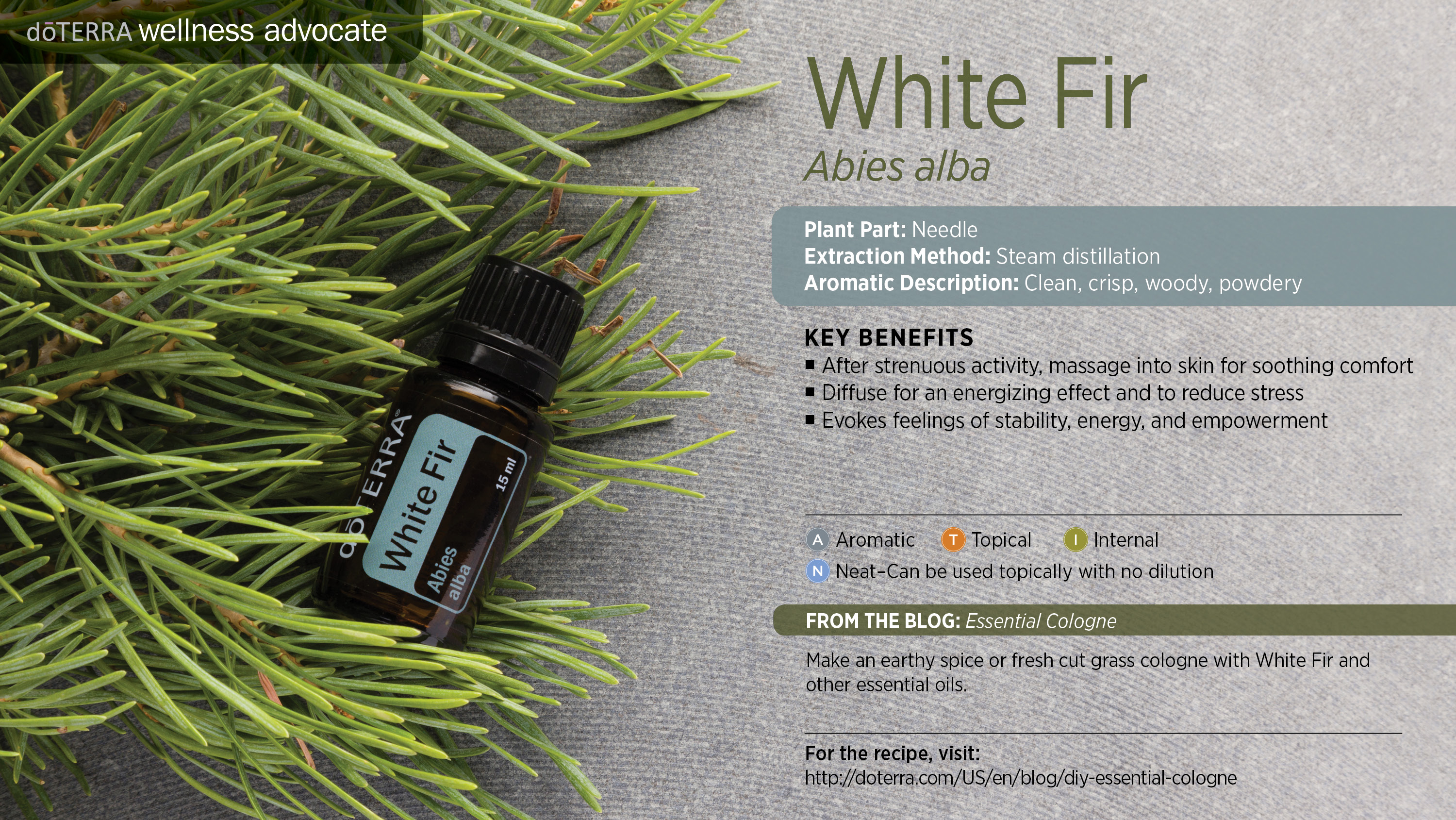 Fir oil - use for the benefit of beauty and health 48