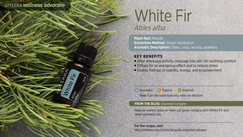White Fir Oil Dōterra Essential Oils