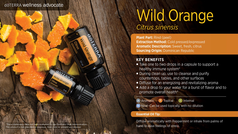 dōTERRA Wild Orange EO